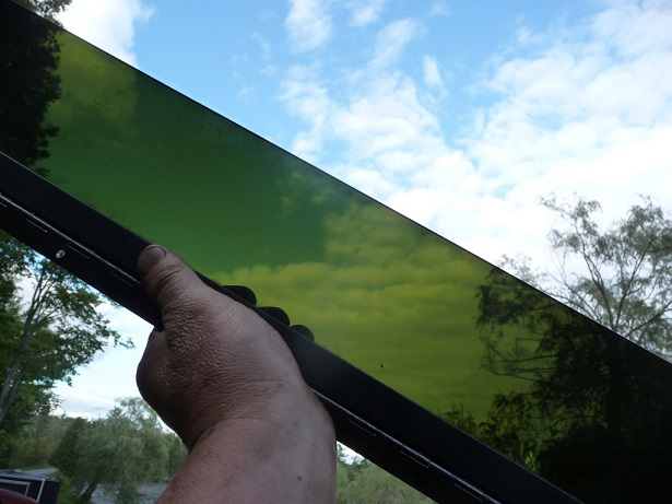 Know About Windshield Tint Laws